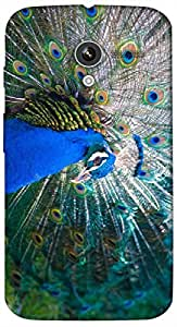 Timpax Protective Hard Back Case Cover With access to all controls and ports Printed Design : A dancing peacock.100% Compatible with Motorola Moto-X ( 1st Gen )