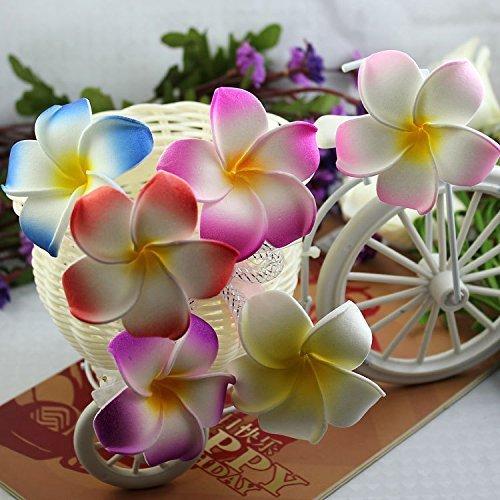 Calcifer-30pcs-Hawaii-Hawaiian-Plumeria-Flores-Clips-Clips-de-pelo-de-novia-boda-fiesta-playa-Flower-Diameter354