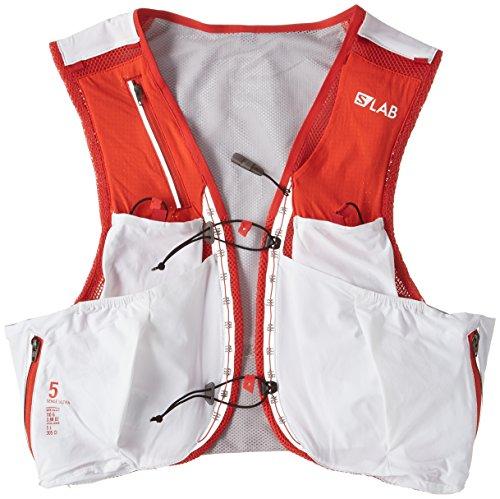 salomon s-lab sense ultra 5l hydration vest ebay