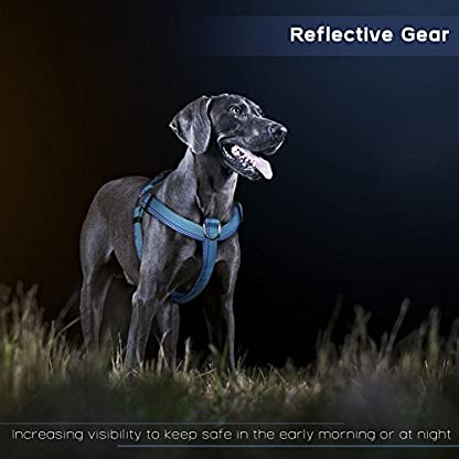 PETBABA No Pull Dog Harness, Front Clip Give Pet Choke Free Walking, Reflective Safety at Night, Step-in Vest with… 4