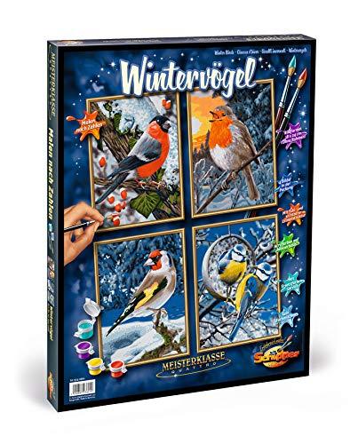 Schipper 609340661 609340661-Malen nach Zahlen, Wintervögel, Quattro, 18 x 24 cm
