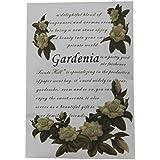 Olores Hill bolsitas perfumadas sobre para cajones y armarios (Gardenia)