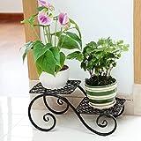 ZI LING SHOP- Hierro de estilo europeo Simple Flower Rack Balcón Salón Sala Flor Rack Flower racks ( Color : Negro )
