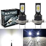 NGCAT H7 Ampoule LED pour feu de Brouillard DRL lumière Super Bright DRL Top Advanced 3570 CSP LED 6500 K 2400LM étanche IP68 75 W 12 V Lumière LED Blanche (Lot de 2)