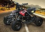 Mini ATV Easy Pullstart Quad Pocketquad Kinderquad Kinderfahrzeug Repti (Schwarz)
