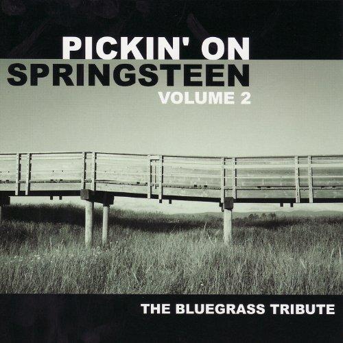 Pickin' On Bruce Springsteen V...