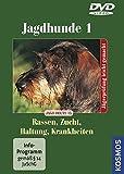 Jagdhunde 1 - Rassen/Zucht/Haltung/Krankheiten