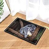 fuhuaxi Netter Koalabär, der auf der Inneneingangstürmatte des Baumteppichs Anti-Rutschfußbodeneingangs im Freien, 40x60cm Badezimmermattenbadezimmerwolldecke schläft