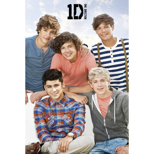 One Direction - Poster Bench (One Poster Night Up All Direction)
