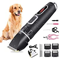 AOOKEY Cortapelos para Perro y Gato, Perro Clippers Mascotas USB Recargable Recortadora para Perros, Bajo Ruido y Vibración