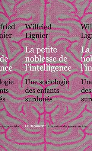 La petite noblesse de l'intelligence (Laboratoire des sciences sociales) par Wilfried LIGNIER