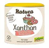 Xanthan (100 g)