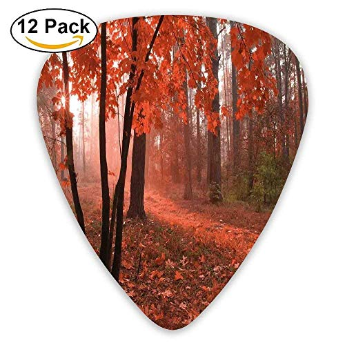 Misty Forest With Leaves From Deciduous Seasonal Trees Warm To Cold Featured Image Decorative Guitar Picks 12/Pack Misty Leaf