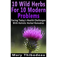 Ten Wild Herbs For Ten Modern Problems: Facing Today's Health Challenges With Holistic Herbal Remedies (English Edition)