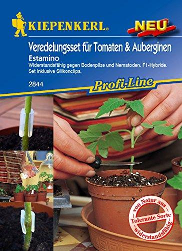 Veredelungsset Tomate Estamino und - Die Tomaten-samen, Krankheiten Gegen Resistent
