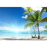 Vlies Fototapete PREMIUM PLUS Wand Foto Tapete Wand Bild Vliestapete - Strand Palme Meer Wolken Sonne Schatten Karibik - no. 2444, Größe: 416 x 254cm Vlies