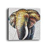 wowdecor Art Wand Moderne Leinwand Prints Gemälde–Abstrakt Elefant Giclée-Bilder auf Leinwand gedruckt, Wanddekoration für Home Wohnzimmer Schlafzimmer–DIY Rahmen, B, Large