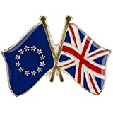 European Union and United Kingdom Friendship Pin Badge with Butterfly Clasp