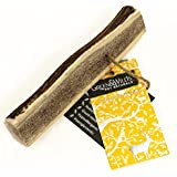 Antler Dog Chews - Easy - Extra Large
