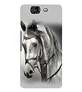 Fuson 3D Printed White Horse Designer Back Case Cover for Micromax Canvas Knight A350 - D797
