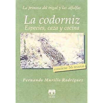 La codorniz / The quail