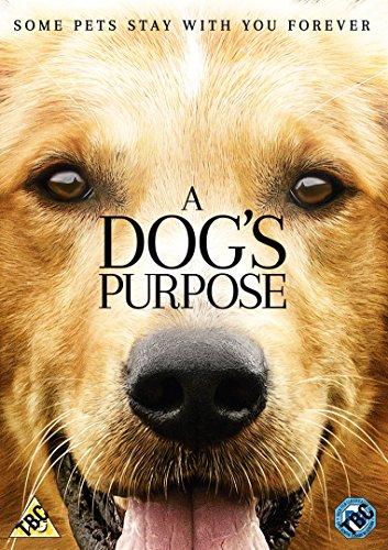 a-dogs-purpose-dvd-2017