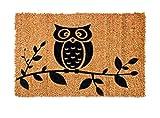 FabaHome Fußmatte Türmatte Kokosvelour,Schmutzfangmatte Kokosfaser, sehr robust, wetterfeste Kokosmatte, Schmutzmatte, 40 x 60 cm, Eule