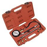 Sealey VSE300D - Kit deluxe per tester per controllo compressione, per motore a benzina (6 pezzi)