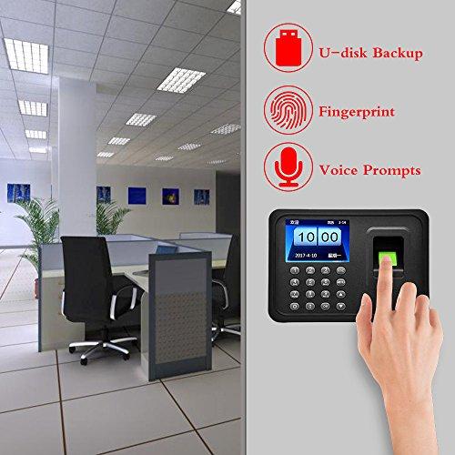 Zoom IMG-3 obo hands di impronte digitali