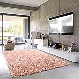 Shaggy-Teppich Pastell | Flauschige Hochflor Teppiche fürs Wohnzimmer, Esszimmer, Schlafzimmer oder Kinderzimmer | Einfarbig, Schadstoffgeprüft (Rose - 120 x 170 cm)