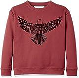 RED WAGON Jungen Sweatshirt mit Adler-Druck, Rot (Red), 128 (Herstellergröße: 8 Jahre)
