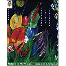 Creation Of Universe: Nature In My Dreams - Disaster & Creation