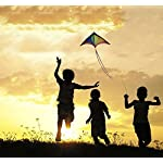 Anpro Huge Colorful Kite for Kids and Adults - Huge Size and Best Easy Flyer, Huge colorful kite with 60m/197 Feet Flying Line 11