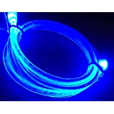 GLOW led light-up data sync charger charge power cable micro usb iphone 6,6+,5,5s,5c, ipad mini ipad4th gen (Blue)