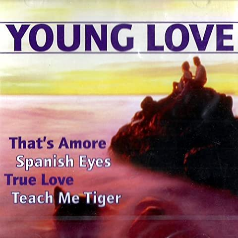 Romantic Love Songs (CD Album, 14 Tracks) dean martin that's amore / bing crosby & grace kelly true love / herman's hermits the end of the world / april stevens teach me tiger / lulu to love somebody / cilla black you're my world etc.. - True Love Album