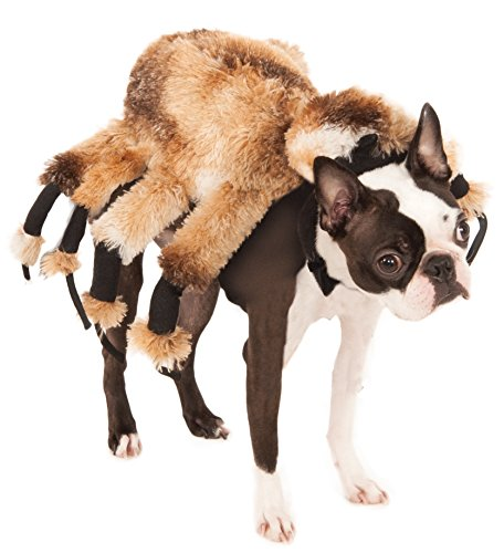 Rubie's Offizielles Giant Spider Pet Dog Halloween-Kostüm