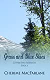 Best Blue Sky Books Romance Kindles - Grass and Blue Skies Review