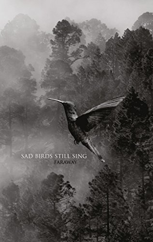 Sad Birds Still Sing: A Poetry Collection (English Edition)