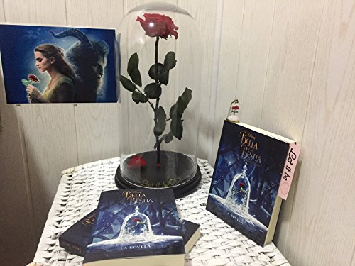 Rosa Bella y Bestia + Libro Novela tapa blanda Envío urgente.