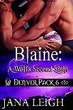 Blaine: A Wolf's Second Sight (Denver Pack Book 6)