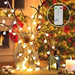 Renfox Catena Luminosa Luci Stringa Lampadina per Giardini, Patio, Case, Festa di Natale