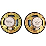 Nippon Power NFC- 1601 Dual Cone Black Inside Car Speaker Boxes for All Vehicles