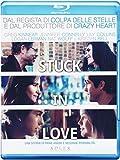 Stuck in Love (Blu-Ray)