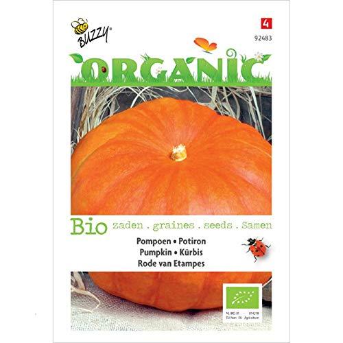 Buzzy® Organic Kürbis Rouge vif d'Etampes (Cucurbita maxima)