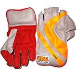 HRS College Wicket Keeping Gloves (Youth, Multicolour)