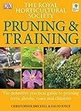 RHS Pruning & Training