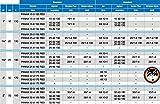 Hocheffizienzpumpe Biral AX 10-1 Heizungsumwälzpumpe - 4
