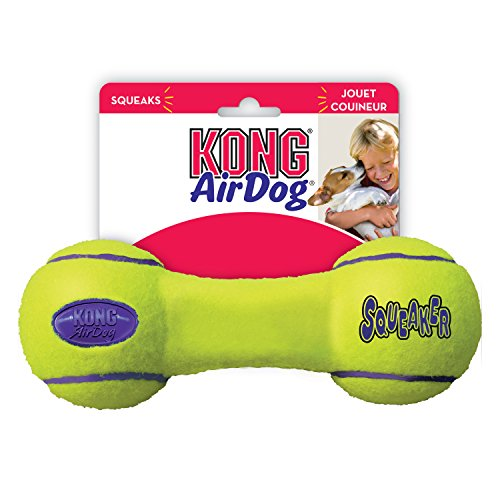 KONG - AirDog® Squeaker Dumbbell - Juguete sonoro