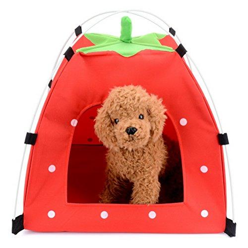 Pet Zelt Strawberry Form Klein Katze Puppy Pop Up tragbar klappbar Wasserdicht Winddicht Sonne Schatten Kissen Hund Zelt für Haus, Strand, Camping, Picknick, Reisen -