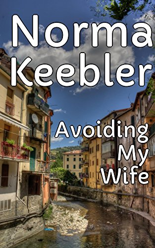 avoiding-my-wife-english-edition